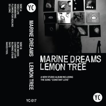 Lemon-Tree-cover370