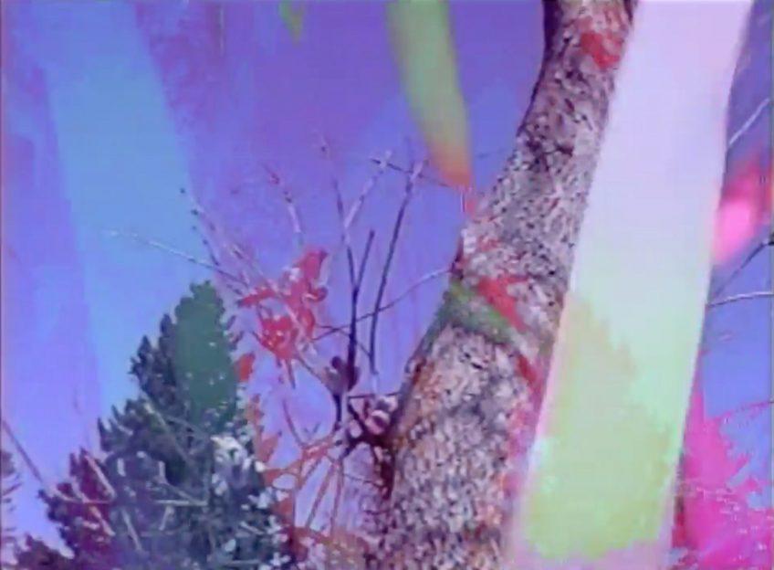 "MUSIC VIDEO: JON MCKIEL – ""MOURNING DOVE"""